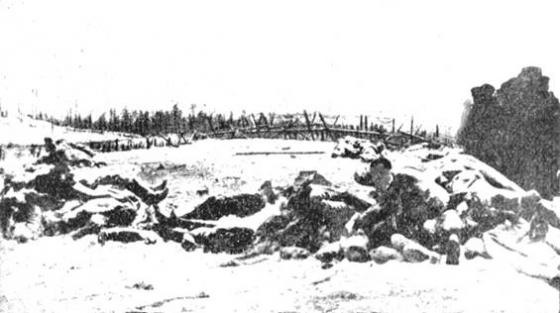 4. Vidzemes latviešu strēlnieku pulka Janvāra 1917 kaujās kritušie karavīri.