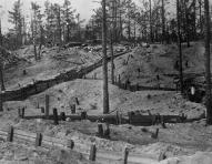 Ziemassvetku kaujas 1916-1917