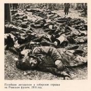 Погибшие латышские и сибирские стрелки на Рижском фронте, 1916г